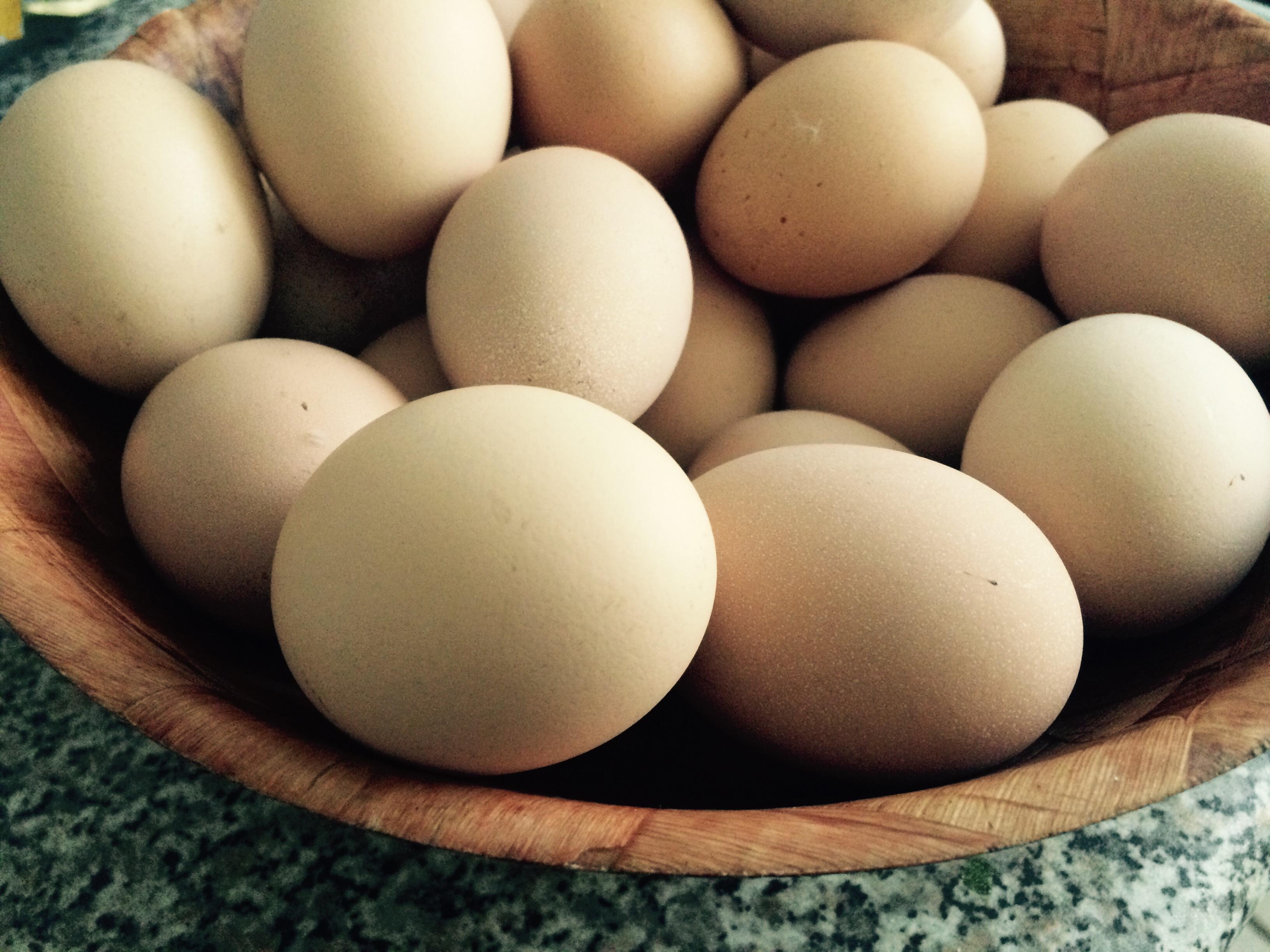 Яйца и яйчни продукти