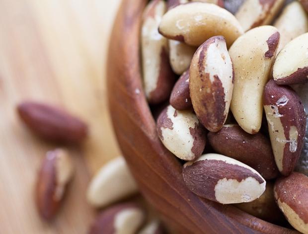 Ядки и маслодайни семена